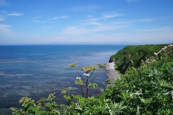 13北海道33