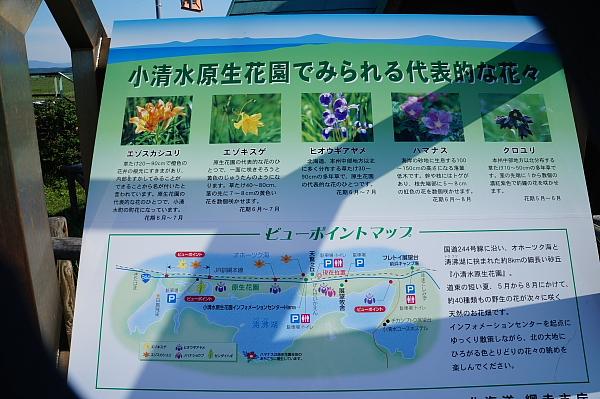 13北海道45