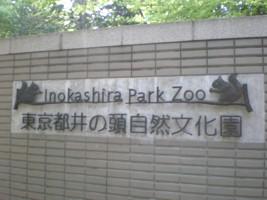 inokashira-zoo29.jpg