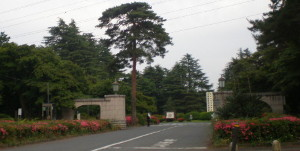 tama-cemetery1.jpg