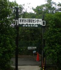 tomioka-safaripark19.jpg