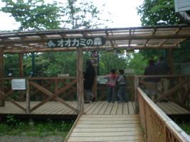 tomioka-safaripark20.jpg