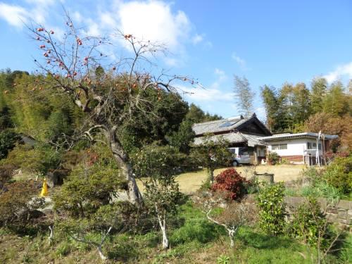 2014_12 09_池村滞在、12月の(1)