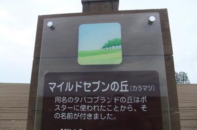 2012_10030020.jpg