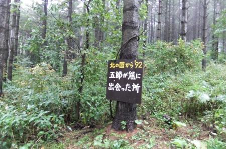 2012_10030368.jpg