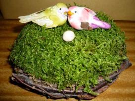 和みの苔の巣(小)