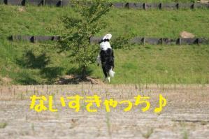 20110910_004mt.jpg