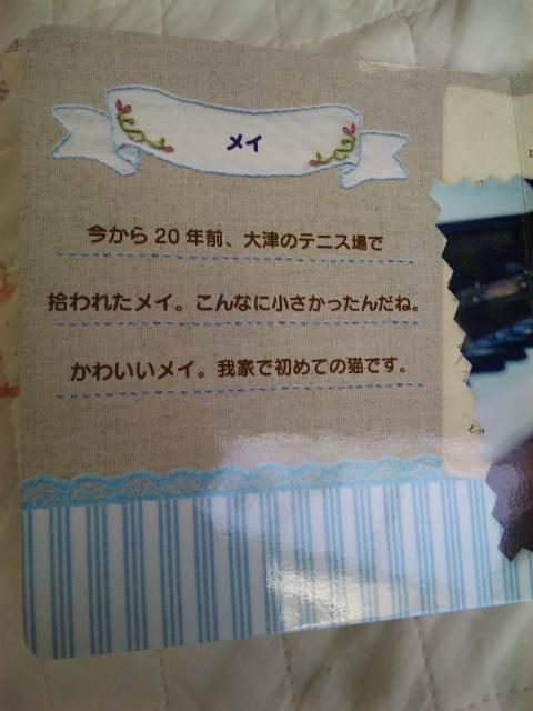2011118mei3jpg.jpg