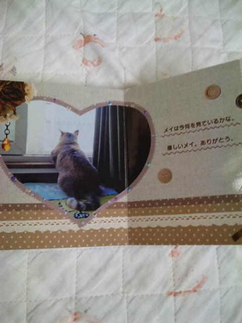 2011118mei5.jpg