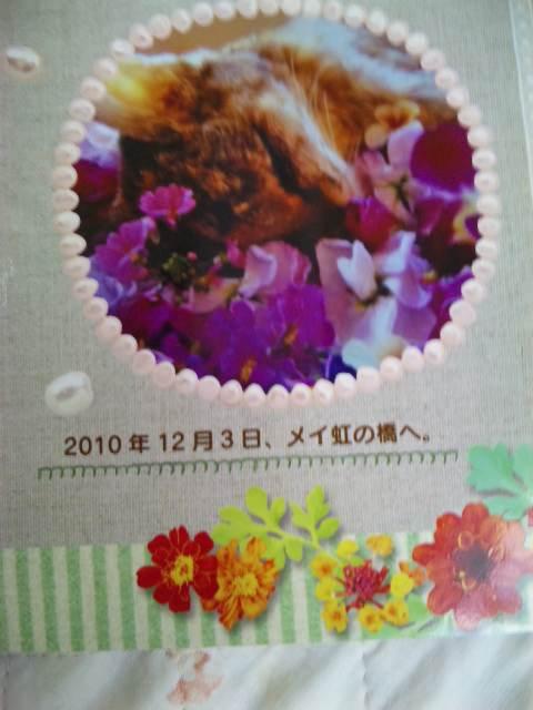 2011118mei6.jpg