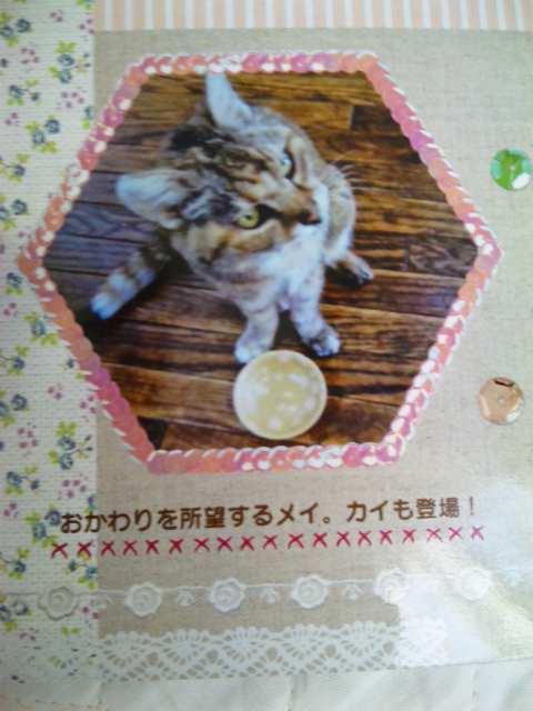 2011118mei7.jpg