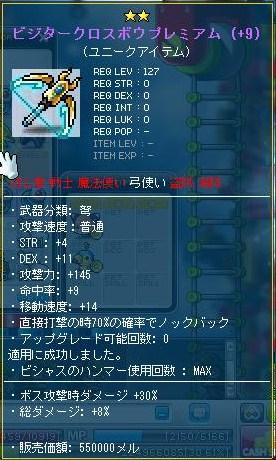 13_20110520235922.jpg