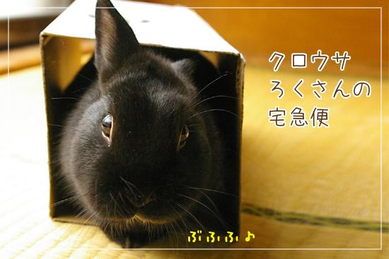 20110321-00.jpg