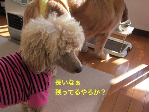 th_IMG_5885-1.jpg