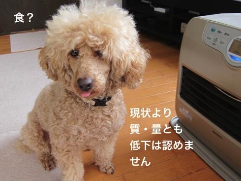 th_IMG_6424-1.jpg