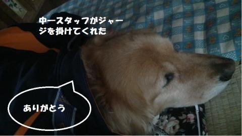 縺礼┌鬘契convert_20110323104428