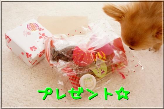 001_20120304220032.jpg