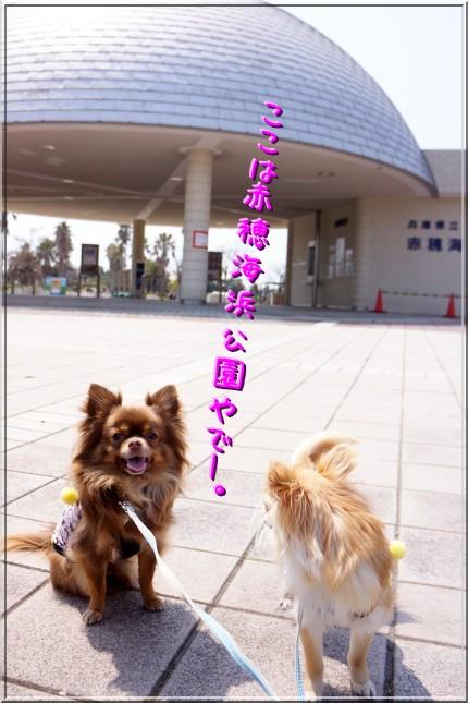 001_20120409135752.jpg