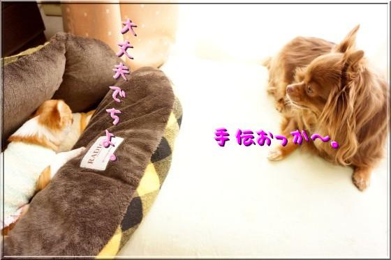 022_20120402214822.jpg
