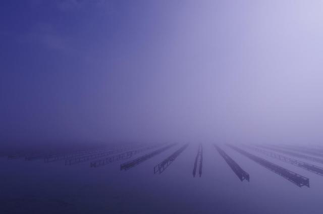 3静~霧の中の牡蠣棚~