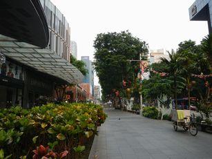 サマーセット界隈 (5)