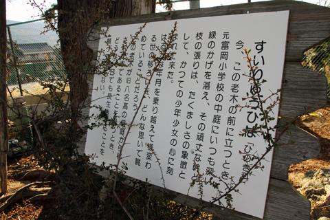 131208-3.jpg