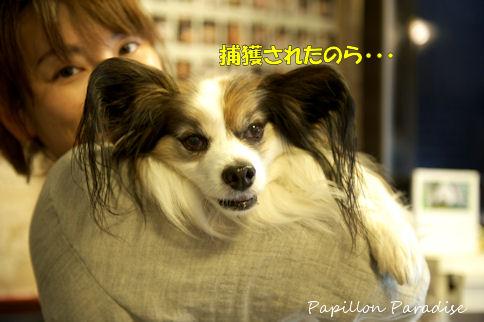 2011050419.jpg
