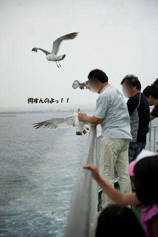 2011081509.jpg