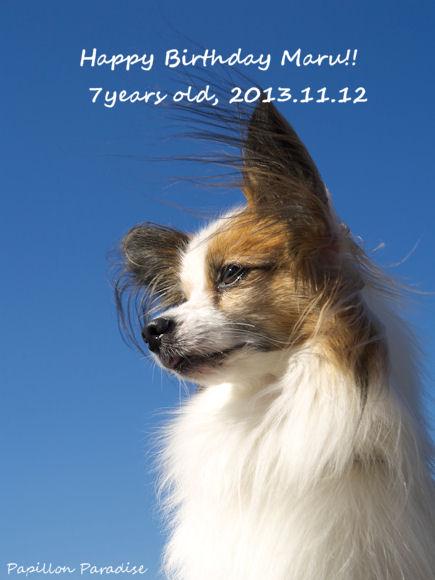 2013111201_01.jpg