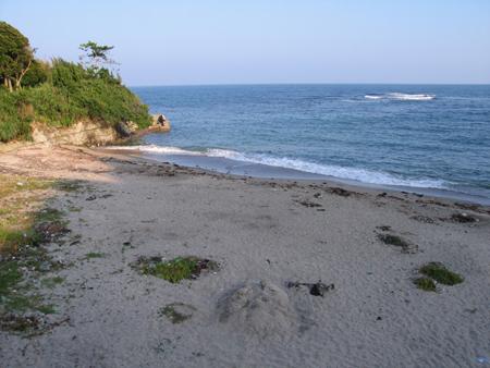 沢倉志島海岸
