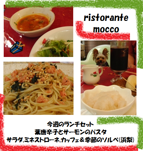 20110919mocco01.png