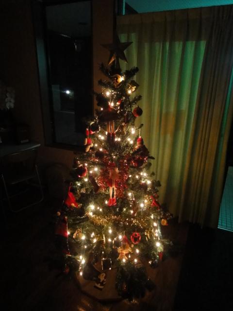 クリスマスツリー 点灯 暗闇バージョン