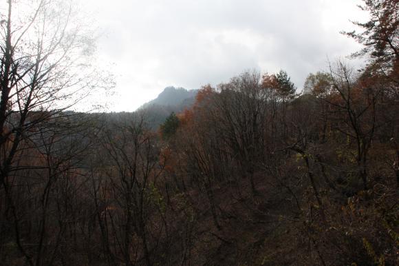 姫ヶ岳 1