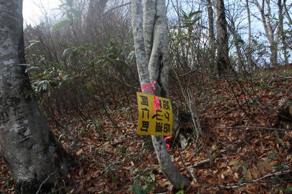 姫ヶ岳 7