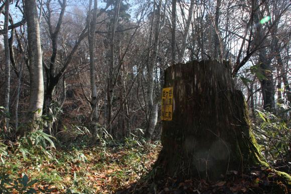 姫ヶ岳 15