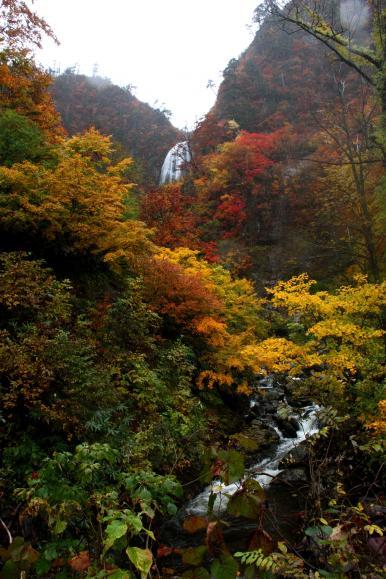 安の滝10