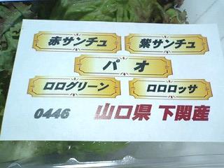 コストコ 焼肉屋さんの包み野菜セット¥480a