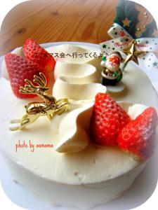 1216Xmas cake