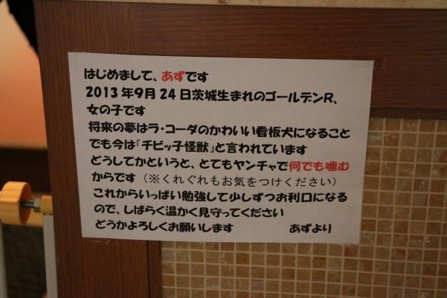 1_20140118211220f75.jpg