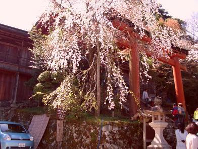 15 吉野水分神社