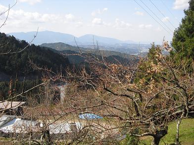 13 金剛山・葛城山遠望