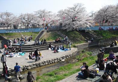 2 大中公園