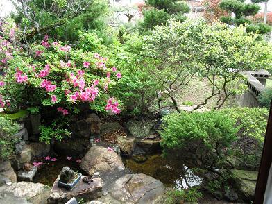 1 実家の庭