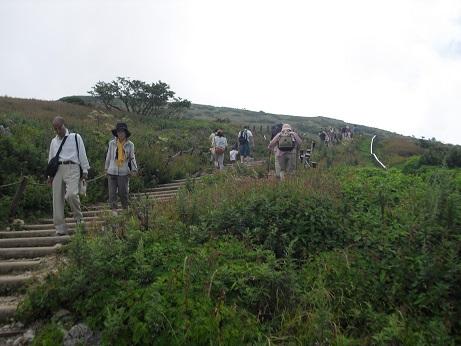 4 登山道を登る