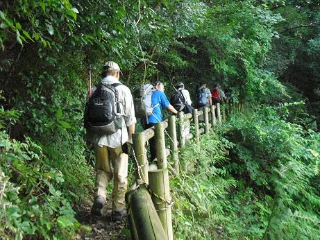 3 自然休暇村滝畑からの登り