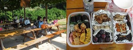 7 昼食 風景
