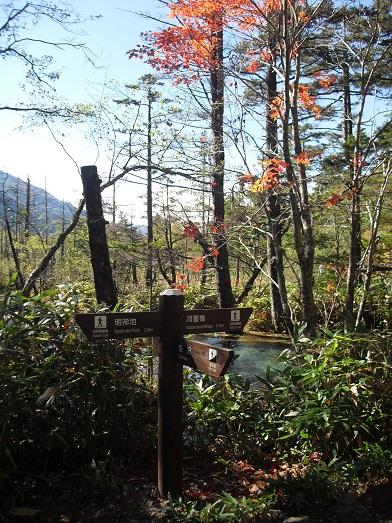 11 岳沢登山口の分岐点