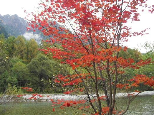 12 紅葉と霞沢岳