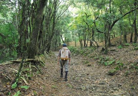 5 柳生街道・滝坂の道コース