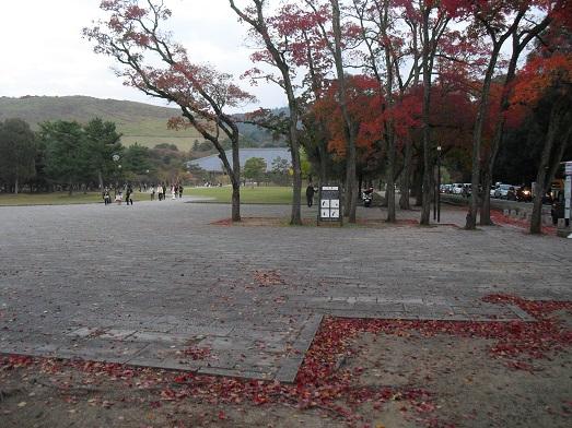 14 奈良公園より若草山方面
